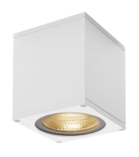 Loftlampe Big Theo, LED 21W 3000K, 2000 lumen, hvid, IP44